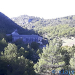 Viajefilos en Abadia de Senanque 001
