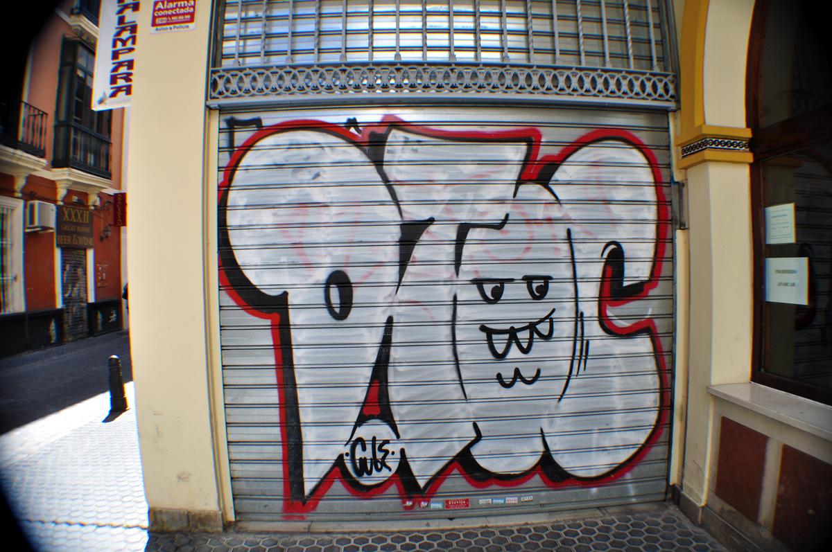 D.Toc (1)
