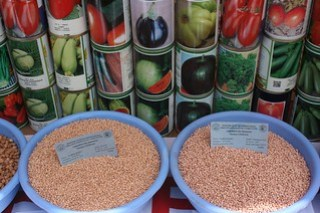Sorghum and fruit and vegetable seeds exhibited at the fair in Bougouni (Photo credit: ICRISAT / Agathe Diama)