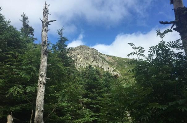 Avery Camp View Avery Peak