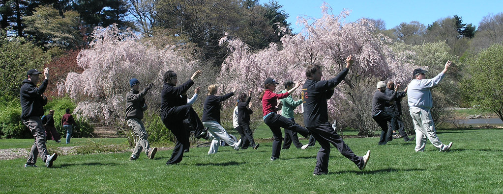 World Tai Chi Day