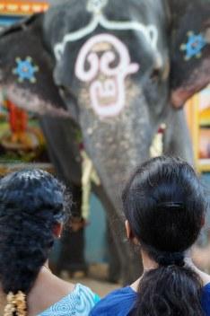 Indien India Pondicherry Puducherry Blog (37)