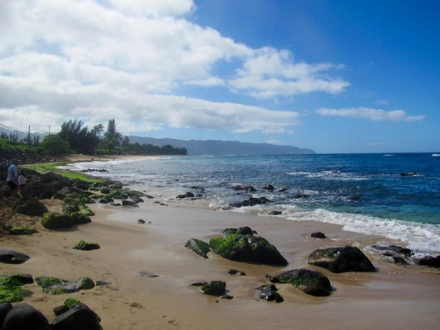 Picture from Laniakea Beach