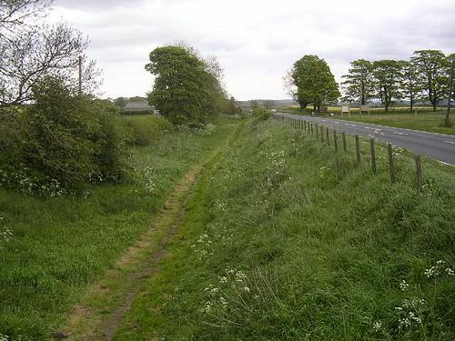 Walking in the ditch near Vallum Farm