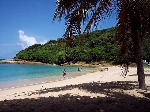 Hawksbill Quot Eden Quot Beach Eylon Israely Flickr