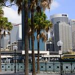 Viajefilos en Australia. Sydney  039