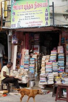 Indien India Pondicherry Puducherry Blog (9)