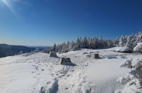 Mt Osceola Summit