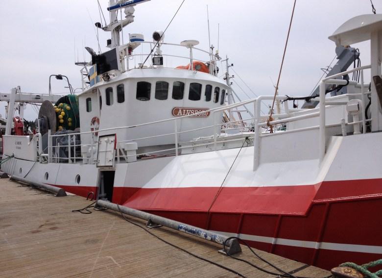 fiskeback12juli_2015-2 - 7