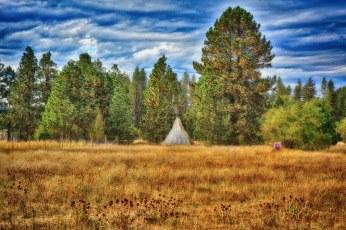 Eceti Ranch - Field of Dreams