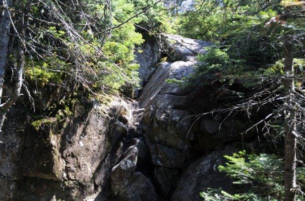 Mt Success Ledge Climb