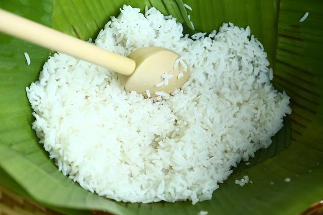 Jasmine Steamed Rice
