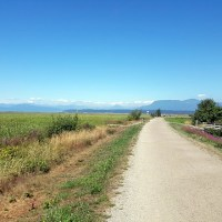 Cycling to Steveston