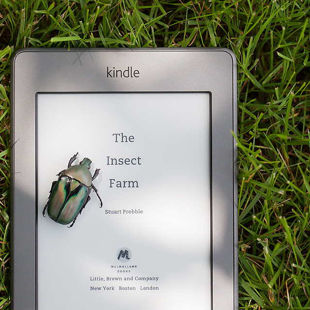 The Insect Farm - Book Review