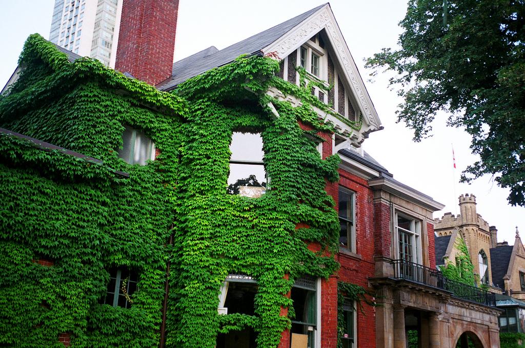 Imagen gratis de una casa con hiedra