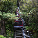 Viajefilos en Australia. Blue Mountains 032