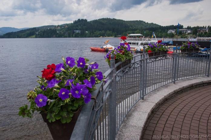 Lake Titisee Germany