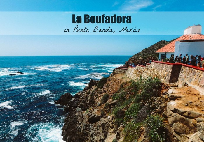 La Boufadora in Punta Banda, Mexico | Perogy and Panda