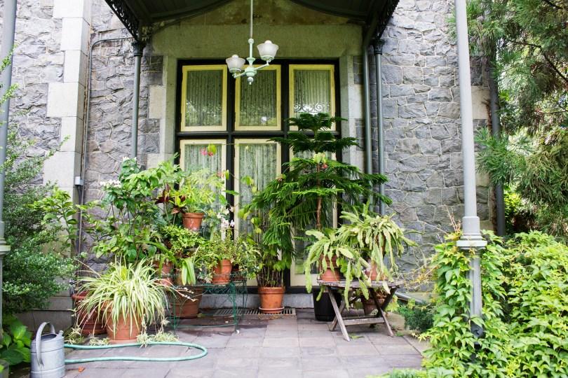 rockwood-mansion-park-plants