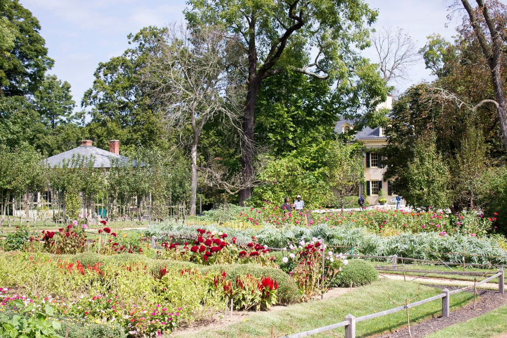 hagley-garden-food-tour-garden-red