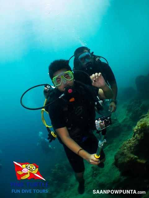 Anilao Scuba Dive