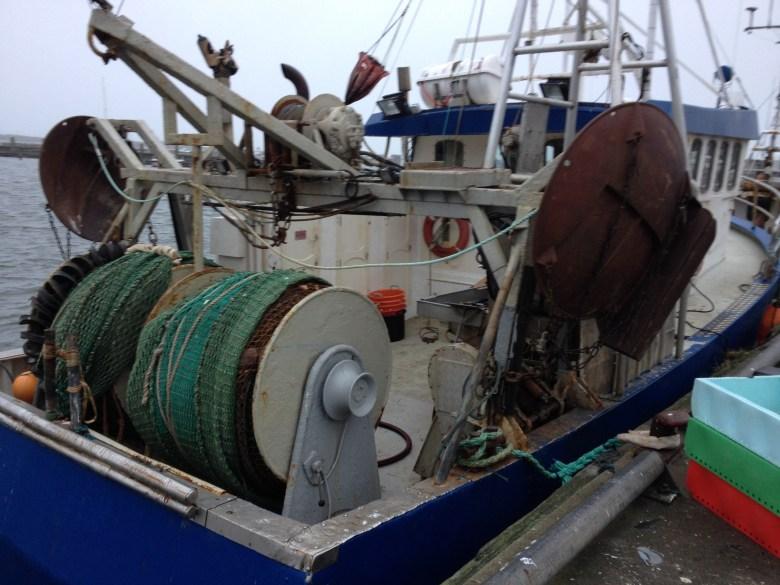fiskebäck_juldagen_2016_ - 25