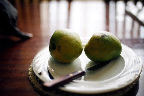 Mangos at Kizito's house