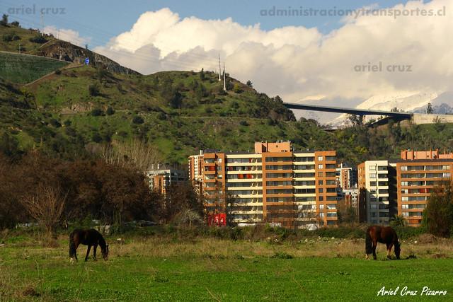 Ciudad Empresarial & Caballos