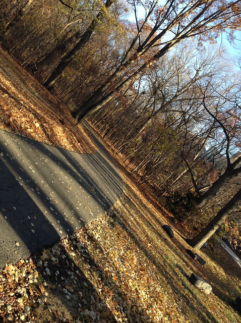 Snapshots From My November Commute (1/6)