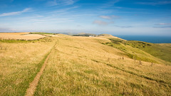 Footpath on the #JurassicCoast