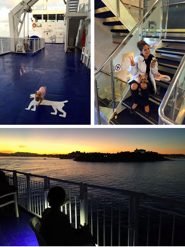 Viajar con mascotas a Reino Unido: A bordo de BrittanyFerries Viajar con mascotas a Reino Unido Viajar con mascotas a Reino Unido desde España 23363701390 c6e30991f2 b