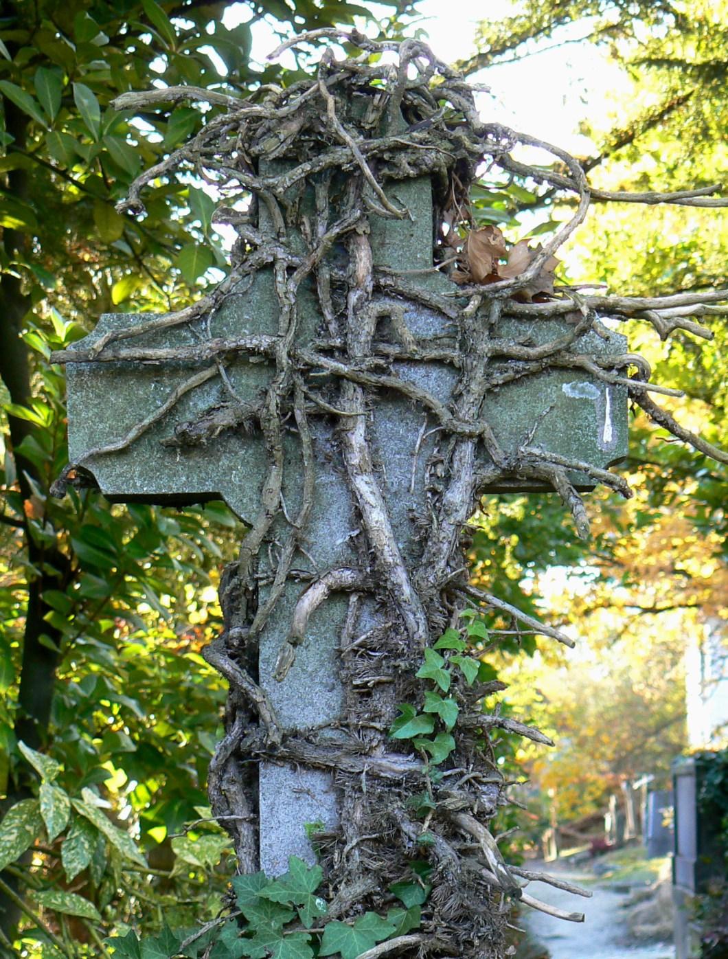 Imagen gratis de una cruz cubierta de vegetación