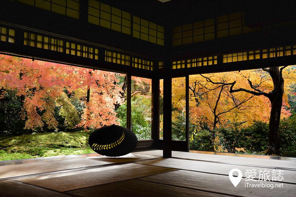 京都賞楓景點 琉璃光院 32
