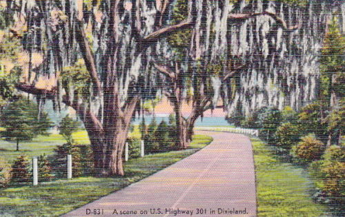 US 301 in Dixieland front