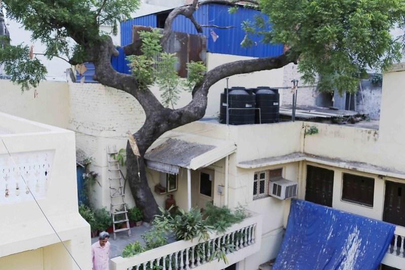 Home Sweet Home – Sheeba & Arshad's House, Chhatta Sheikh Mangloo