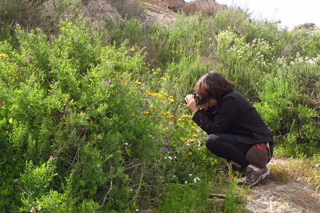 Anita - Fotografía de flores