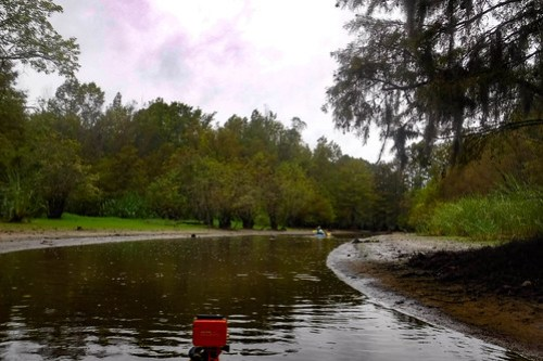 Sparkleberry Swamp with LCU-12