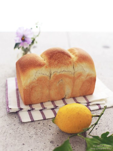 自家製レモン酵母の食パン 20170112-IMG_1084 (2)-1