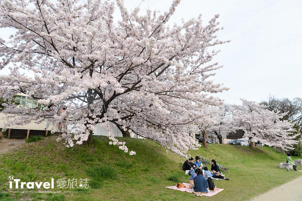 京都脚踏车出租 Rent a cycle EMUSICA (33)