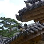 07 Corea del Sur, Haeinsa 27
