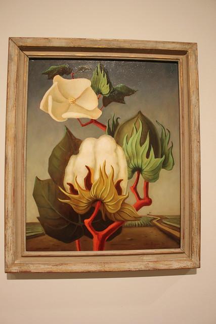 Otis Dozier, Cotton Boll, Dallas Museum of Art