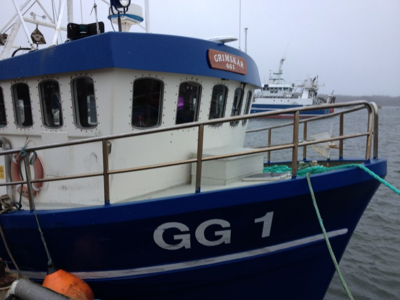 fiskebäck_juldagen_2016_ - 28