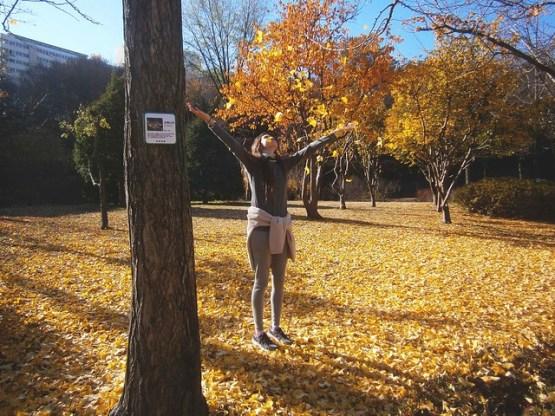 Loving Fall