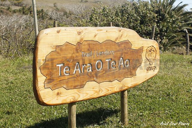 Te Ara o Te Ao - Isla de Pascua