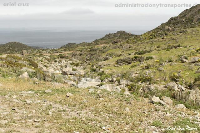 Cordillera de la Costa - Camino a Chungungo