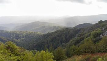 Castle Rock State Park Saratoga Gap Trail Miladidit