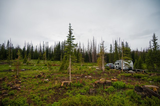 All Alone in Nash Fork Campground