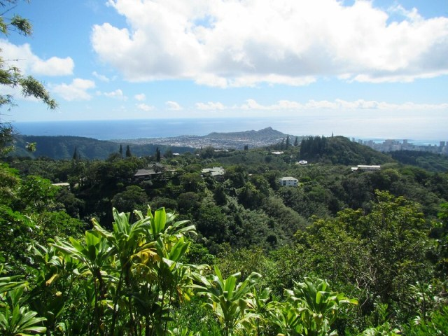 Picture from the Puu Ohia Trail
