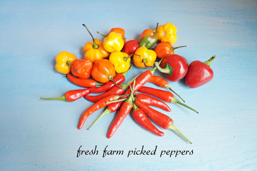 peppers -edit