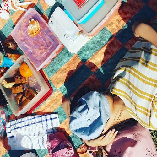 Piknikeni